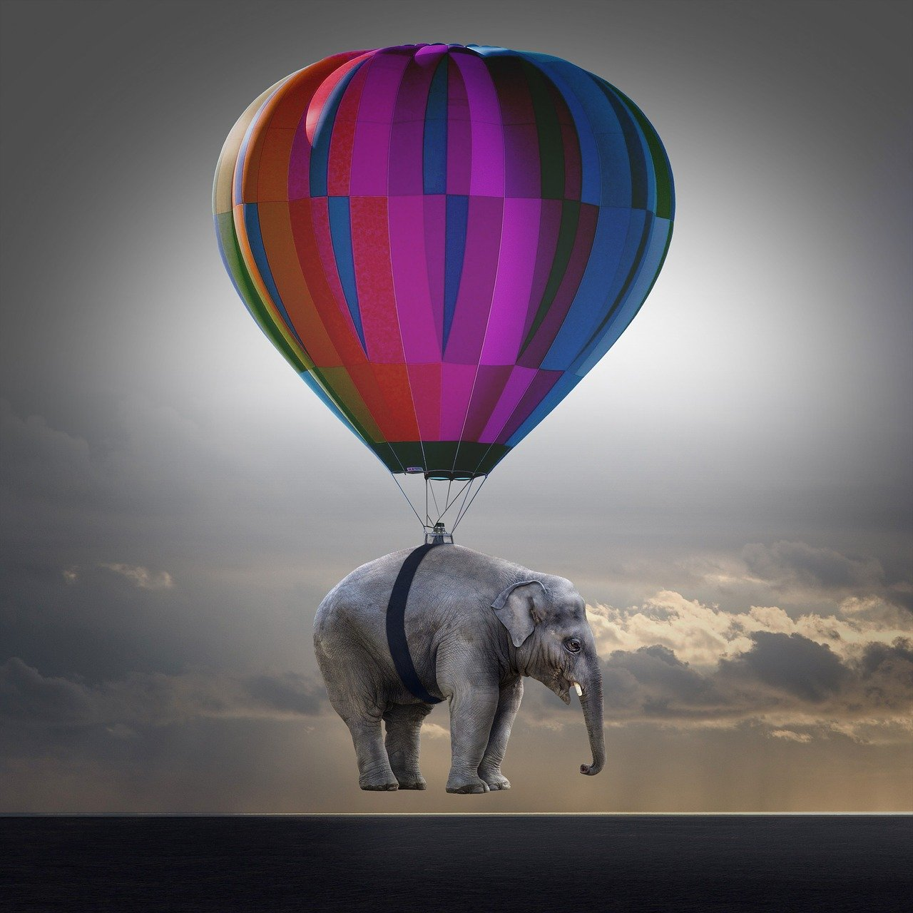 elephant, weightless, balloon